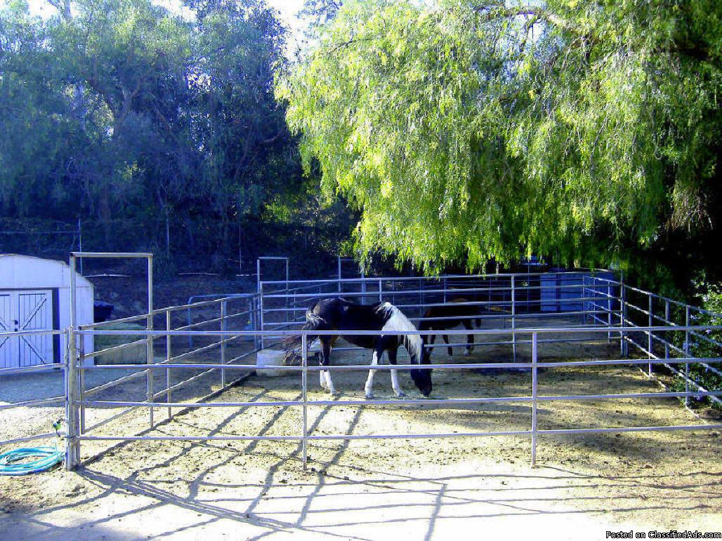Photo Horse Boarding 36 ft x 36 ft Corrals $160 With Hay (2 flakes per day)