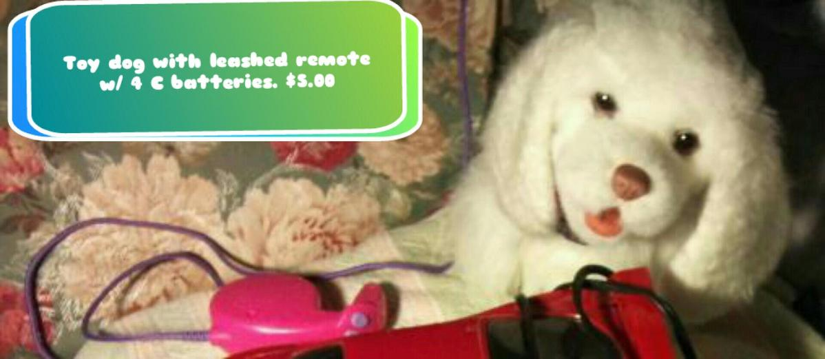 Photo Toy white dog
